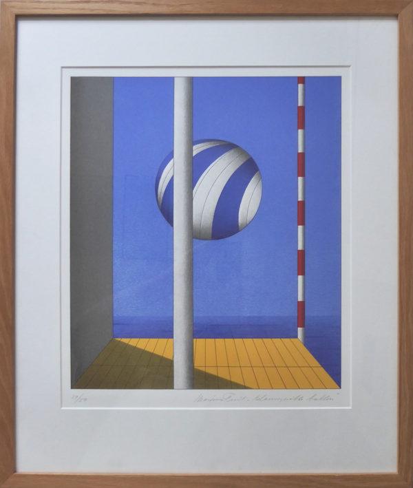Marinus Fuit - Blauwwitte ballon