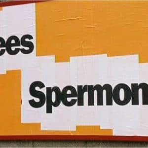 Kees Spermon
